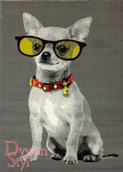 Dywan                             Flash Modern Doggie szary (3484)