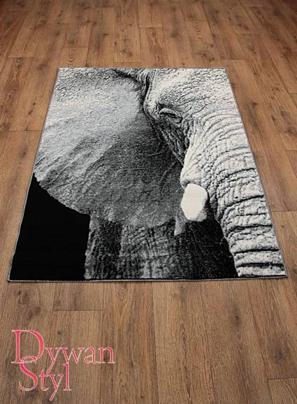 Dywan                                             Flash Modern Elephant szary (3578)